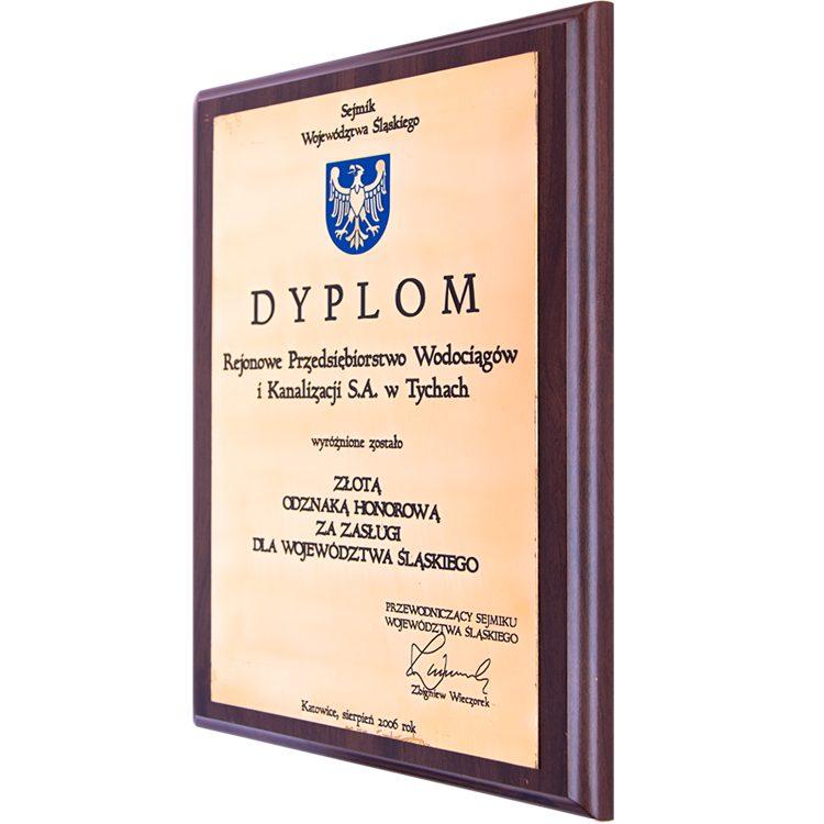 Złota Odznaka 2006